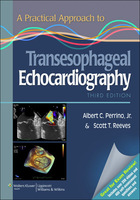 A Practical Approach to Transesophageal Echocardiography, ed. 3