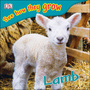 Lamb, Rev cover