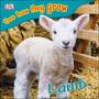 Lamb, Rev cover