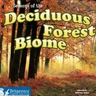 Seasons of the Deciduous Forest Biome image