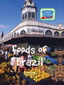 Foods of Brazil cover