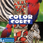 Color Codes image