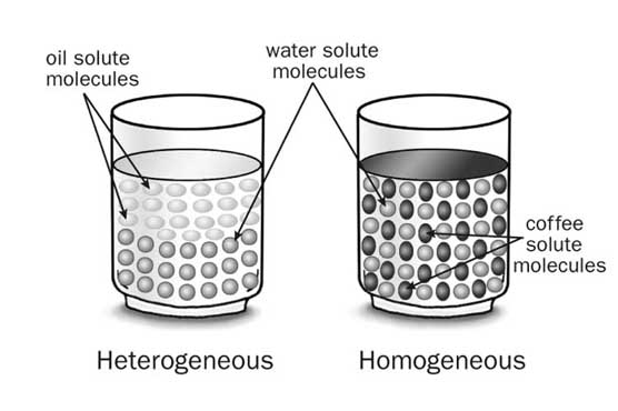 Science in context document for Soil homogeneous or heterogeneous