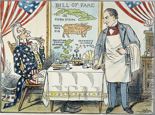 Image result for cartoon american imperialism