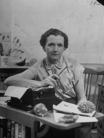 Biologist Rachel Carson, 1952