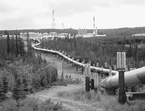 The 800-mile Trans-Alaska pipeline carries oil from Prudhoe Bay to Valdez, and is considered necessary to the economy of the United States, as well as an environmental threat.