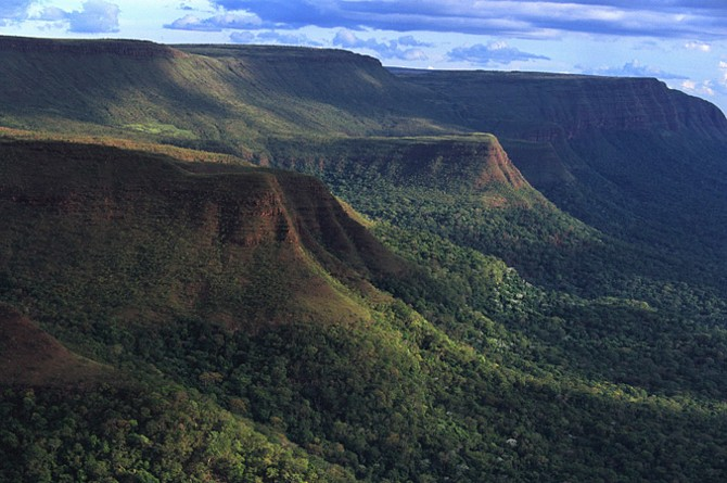 The rain forest in the Noel Kempff Mercado National Park is part of the Amazon basin.