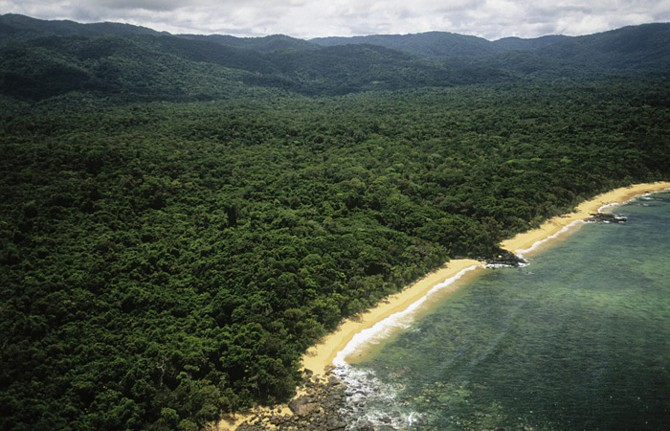 An aerial view of the tropical rain forest and beach at Masoala National Park in Madagascar.