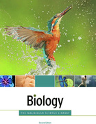 cover of ebook titled the Biology, Second Edition