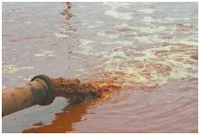 Dirty water discharged into rivers can pollute the water, creating conditions that can lead to environmental diseases.
