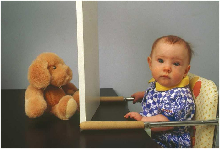 Object permanence is the term used to describe the awareness that objects continue to exist even when they are no longer visible. Following experiments with hiding toys under cloth, Jean Piaget held that infants do not build an understanding of object permanence until the age of 9 months.