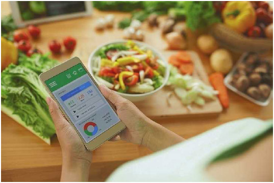 A woman uses a calorie-counting app on her phone to track how many calories she consumes in a day. These food calories are converted into physical energy or are stored in the body as fat.