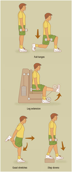 Common quad exercises. The four muscles forming the quadriceps constitute the extensor muscle for the knee. Strong quad muscles help to prevent knee-related injuries.