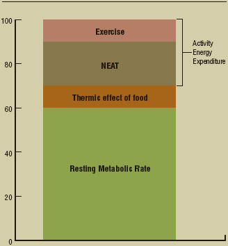 Figure 1. Components of Total Energy Expenditure. Modified from Porcari, John P., Cedric X. Bryant, and Fabio Comana. Exercise Physiology. Philadelphia: F.A. Davis Company, 2015.