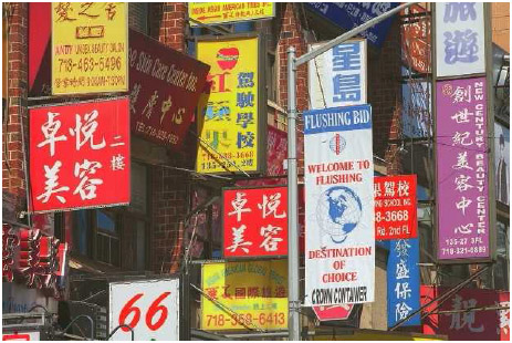 Chinatown in New York City's Flushing Neighborhood. Many U.S. cities have ethnic neighborhoods, where immigrants from particular countries open restaurants, stores, professional offices, and other businesses.