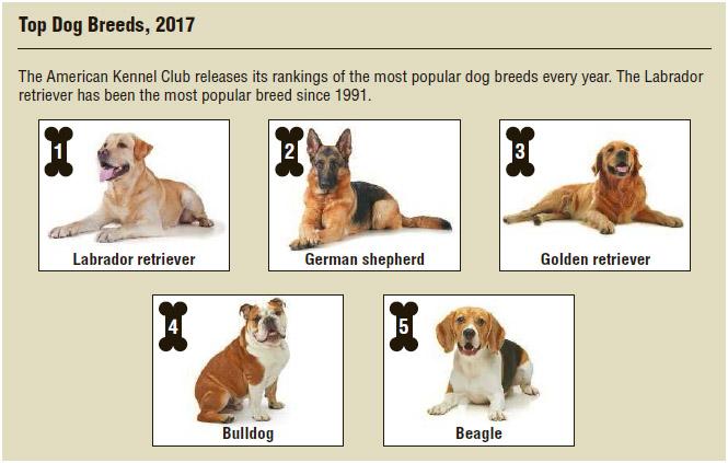 Purebred Dog Industry