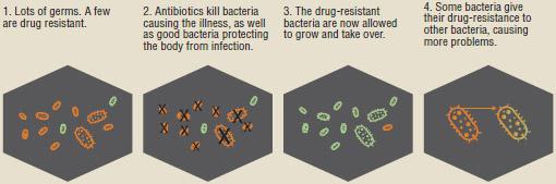 How antibiotic resistance happens