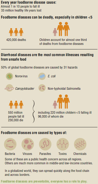 WHO Foodborne Diseases Estimates, 2015