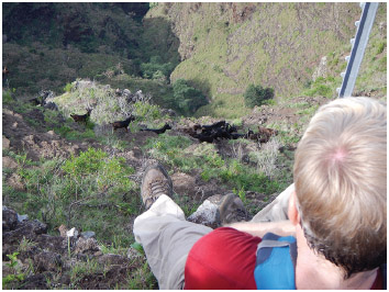 A hiker watches a herd of wild goats run past him in the Waianae mountain range in 2013.