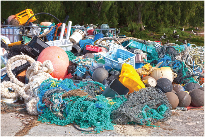 The debris was collected by volunteers, tourists and refuge staff from island beaches and the lagoon to prevent harm to seabirds especially albatrosses, sea turtles, monk seals and other wildlife.