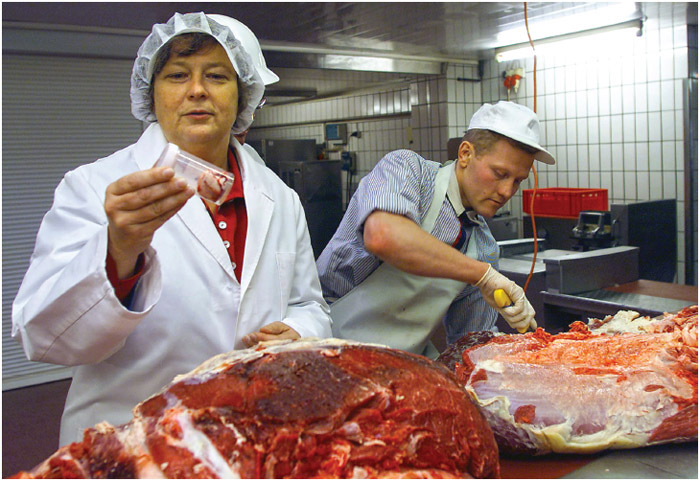 Northrhine-Westphalia's Minister for Health, Baerbel Hoehn, left, participates at a new mad cow disease test in a meat market in Muelheim, Germany, Tuesday Nov. 14, 2000.