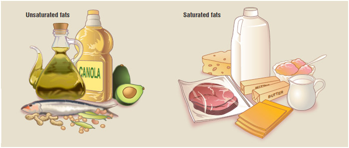 Unsaturated fats can be divided into polyunsaturated fats, which include cold-water fish, poultry, nuts, seeds, vegetable and nut oils, and monounsaturated fats, including olives, avocados, nuts, and beans.