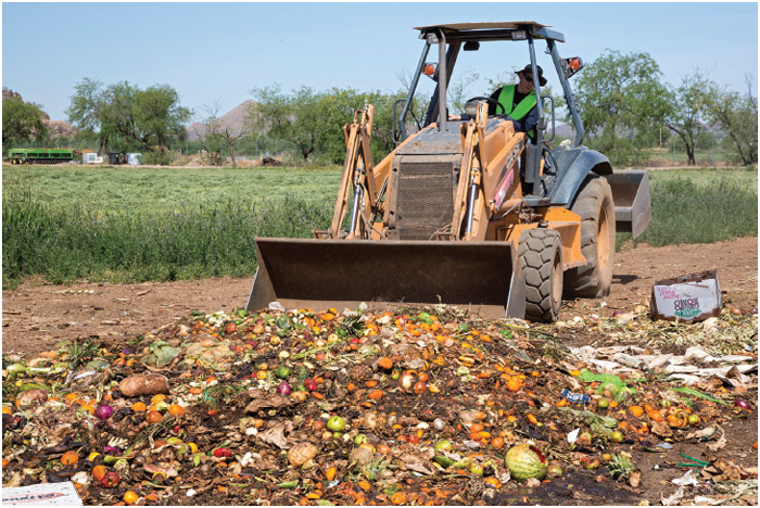 The Compost Cats, a University of Arizona student organization, composts food waste from the city of Tucson, diverting it from landfills. The compost is sold for use on farms and in gardens.