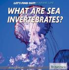 What Are Sea Invertebrates?