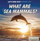 What Are Sea Mammals?