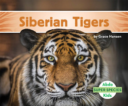 Siberian Tigers, ed. , v.  Icon