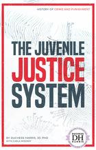 The Juvenile Justice System, ed. , v.