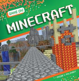 Minecraft, ed. , v.  Icon
