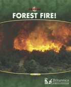 Forest Fire!, ed. , v.