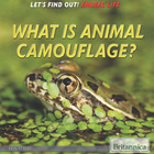 What Is Animal Camouflage?, ed. , v.