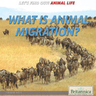 What Is Animal Migration?, ed. , v.