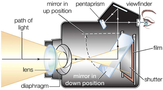 An illustration depicts the cross section of a single-lens reflex (SLR) camera with a flip mirror.