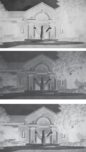 An underexposed negative (top) has few details in the shadow areas. An overexposed negative (middle) is dark and lacks detail in bright areas. A normally exposed negative (bottom) shows details in both light and dark areas.