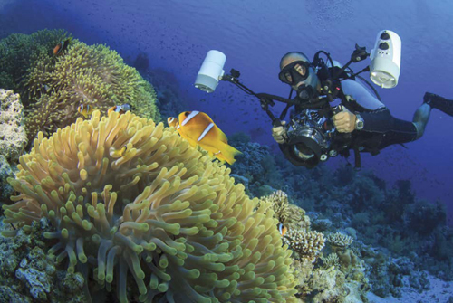 An underwater photographer prepares to take a picture of coral and a clown fish using an underwater camera with video lights. Most underwater photographers use flat or dome ports to cover the lens.