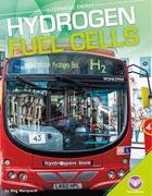 Hydrogen Fuel Cells, ed. , v.