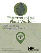 Patterns and the Plant World, Grade 1, ed. , v.