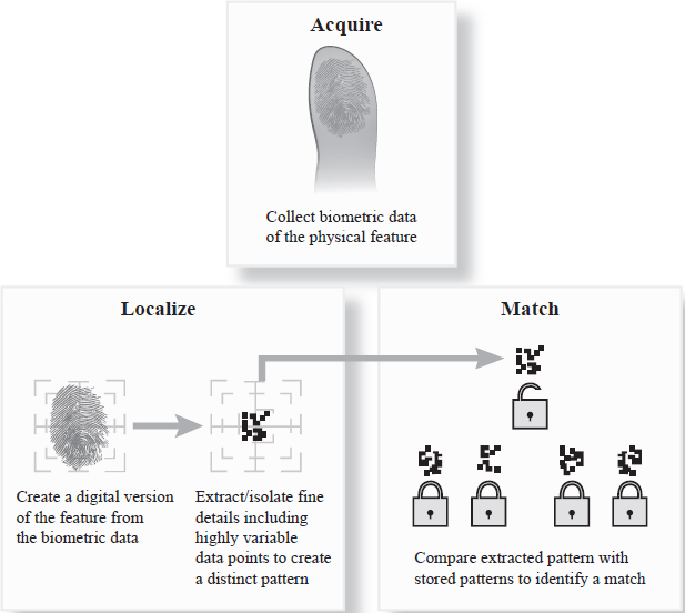 """An attribute is scanned to make a digital representation, isolated details of that attribute are used to create an ID template for a particular person, and the template is matched to the """"key""""."""