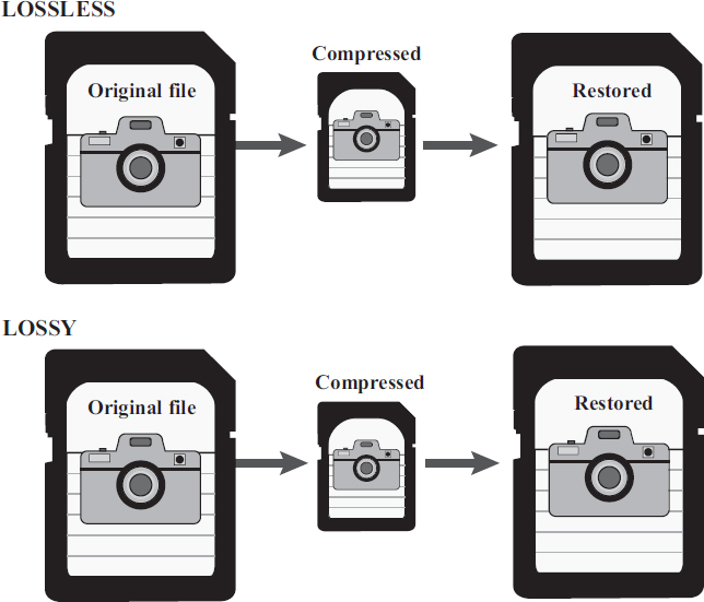 Image formats store varying levels and arrangements of data. Choosing the appropriate file format can make a difference when images are manipulated, resized, or compressed and restored EBSCO illustration.