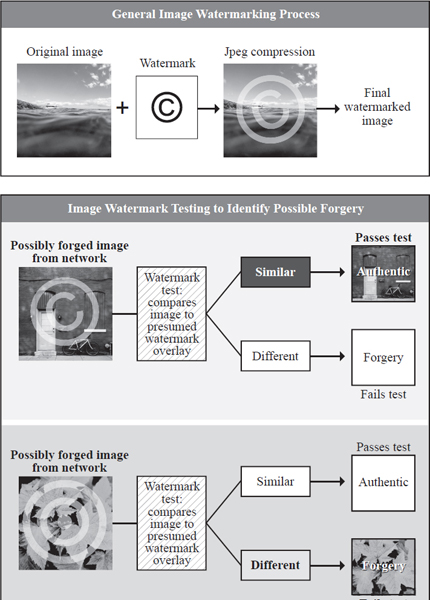 Diagrams of the watermarking process and a process for testing watermarks. EBSCO illustration.