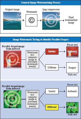 Diagrams of the watermarking process and a process for testing watermarks.