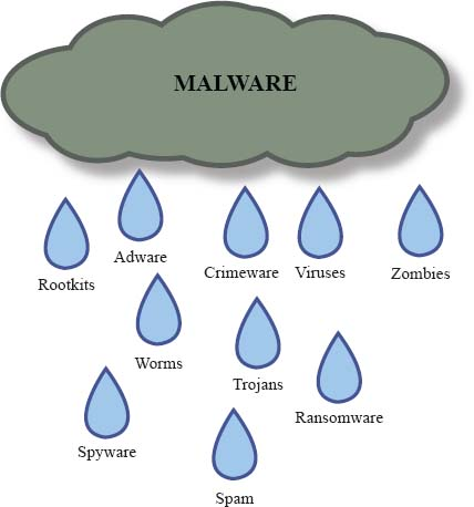 Malware consists of any software designed to cause harm to a device, steal information, corrupt data, confiscate or overwhelm the processor, or delete files. Examples of malware include adware, viruses, worms, Trojans, spam, and zombies.