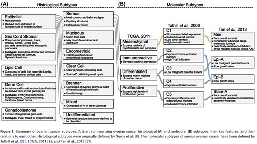 Gale Onefile Health And Medicine Document Ovarian Cancer And The Evolution Of Subtype Classifications Using Transcriptional Profiling