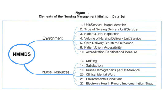 Gale Academic OneFile - Document - Nursing management