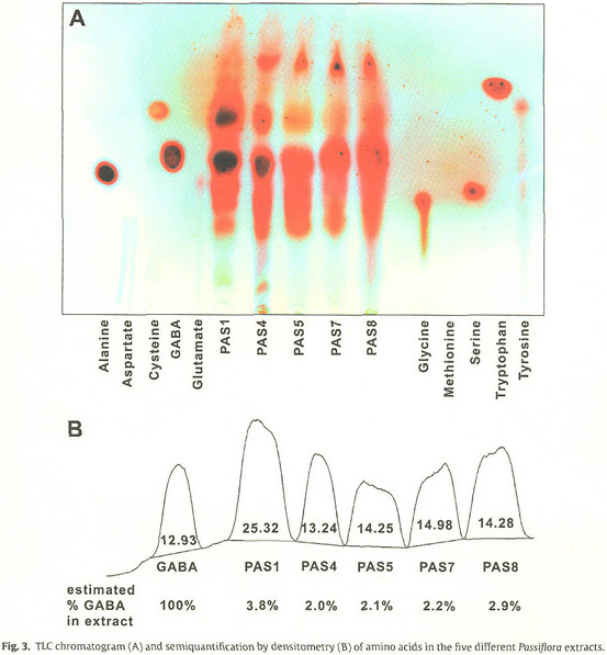 Health Reference Center Academic Document Passiflora Incarnata L Passionflower Extracts Elicit Gaba Currents In Hippocampal Neurons In Vitro And Show Anxiogenic And Anticonvulsant Effects In Vivo Varying With Extraction Method