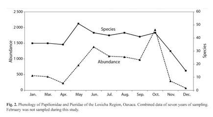 Gale Academic Onefile Document Distribucion Y Diversidad De Papilionidae Y Pieridae Lepidoptera Papilionoidea En La Region Loxicha Oaxaca Mexico