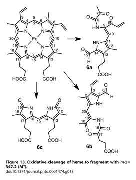 naltrexone for alcohol